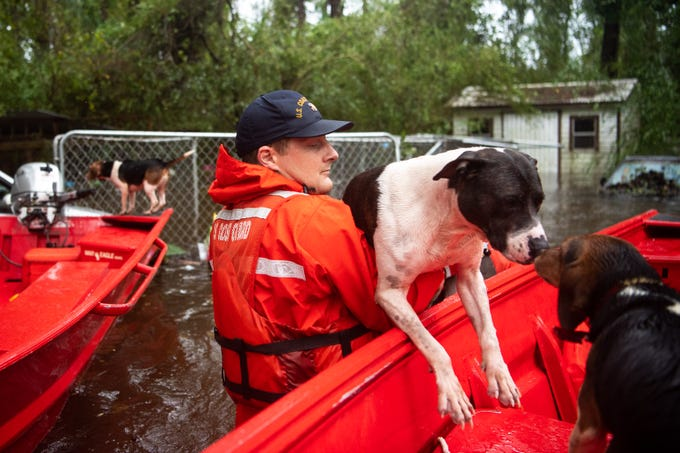 Coast Guard FN Tyler Elliott, from Louisville, Ky., helps rescue one of fourteen dogs from a flooded home in Columbus County, N.C., Sept. 16, 2018.
