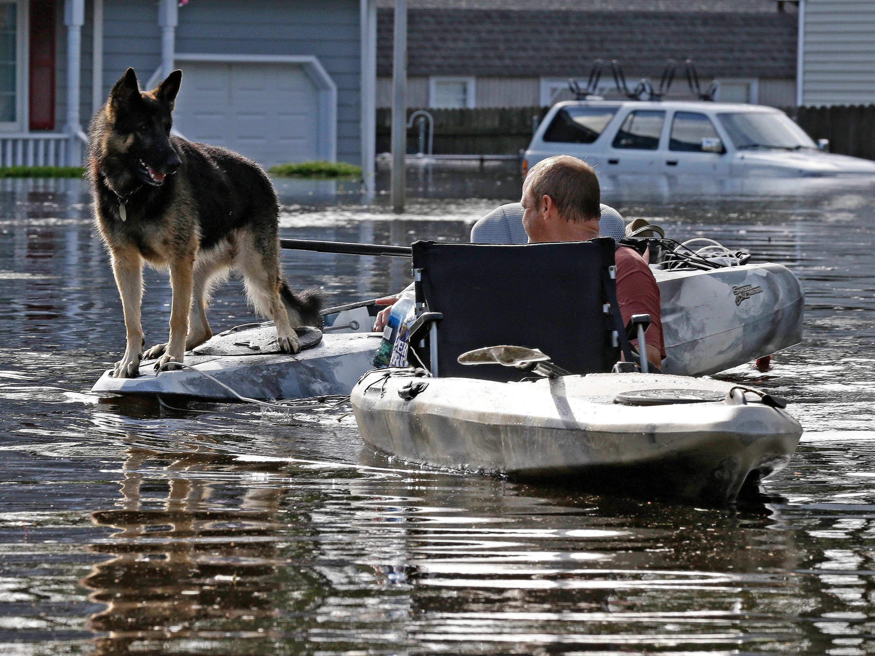 A man tries to get his dog out of a flooded neighborhood in Lumberton, N.C., Sept. 17, 2018, in the aftermath of Hurricane Florence.
