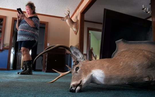 Wendy Rhodes takes photographs of her flood damaged home on Tuesday, Sept. 18, 2018 in Hallsville, NC. A mounted deer head had fallen off the wall during Tropical Storm Florence  where Rhode said 2 feet of water came into her Duplin County home.