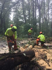 Crews worked Monday, Sept. 17, assessing and removing debris from the Blue Ridge Parkway as response to Hurricane Florence began. The parkway south of Asheville saw the least damage of areas assessed, and much of it has reopened.