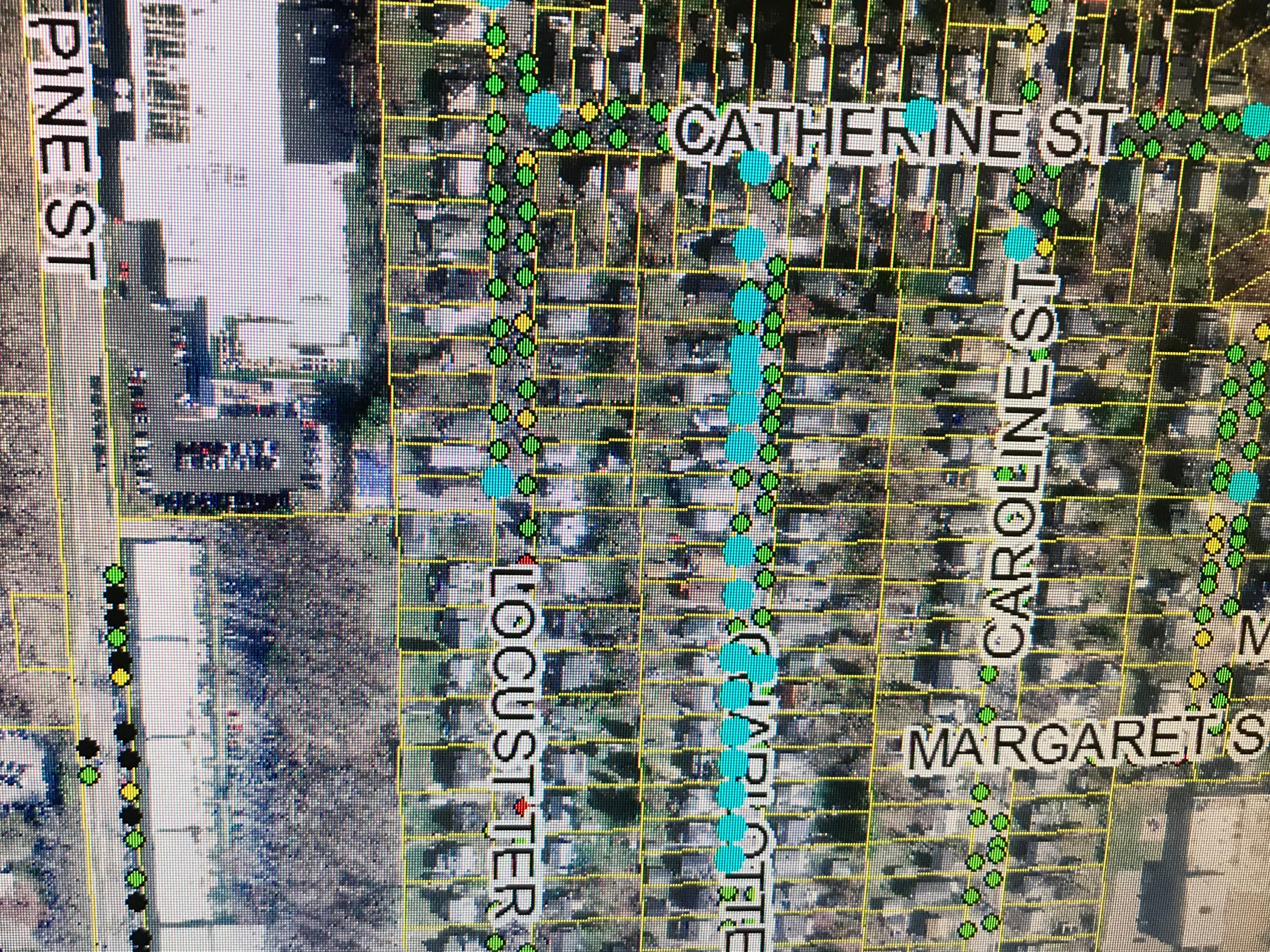 An almost-uninterrupted stand of ash trees (marked in teal) line the greenway along Charlotte Street in Burlington, as seen in this map on the city's website on Sept. 13, 2018.