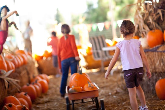 It's time to load up on fall fun. Festivals are planned in South Jersey every weekend of the season.