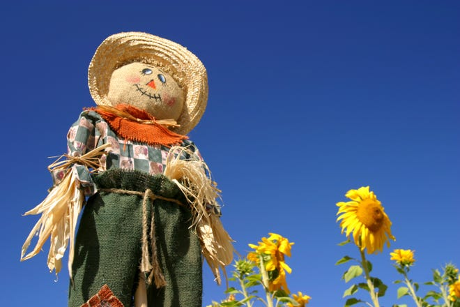 Building a scarecrow is just one of the fun family activities offered at South Jersey's fall festivals.