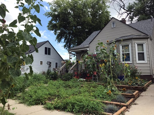 Michael Purdy started using his front lawn as garden space in 2015 after Ferndale passed a native vegetation ordinance allowing homeowners more freedom in their landscaping choices.