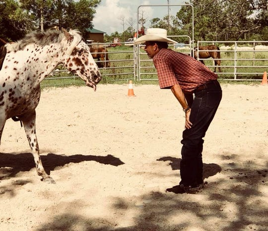 Cowboys and horses: another favorite