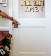 Jodi-Le, a German shepherd partnered with William Branum, the Hardin County fire district 14 chief, waits for Branum to open the door so she can go outside at Hardin County Circuit Court in Savannah, Tenn., on Monday, Sept. 17, 2018.