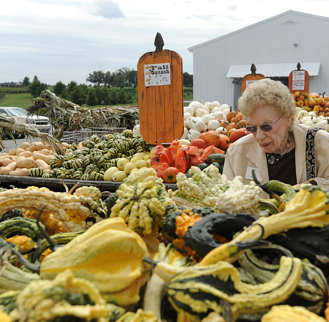 Alice Mathis of Karnak, Illinois looked over the gourds at Joe Huber's Family Farm and Restaurant in Starlight in 2011.