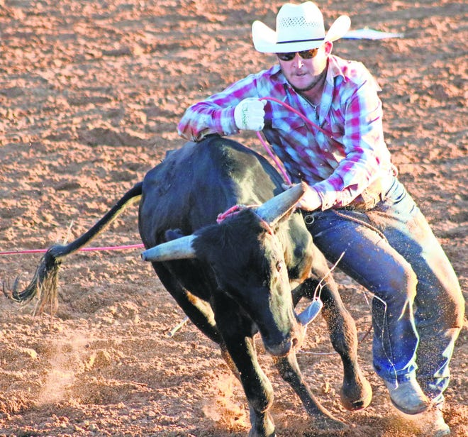A cowboy tries to wrestle down a steer at last year's Otero County Fair Ranch Rodeo  at the Guy Warden Arena.