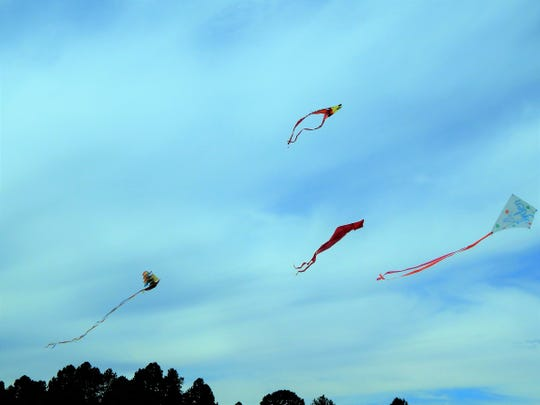 Kites of all shapes and sizes are welcome at the 2018 Kite Festival as a they fly high on the winds.