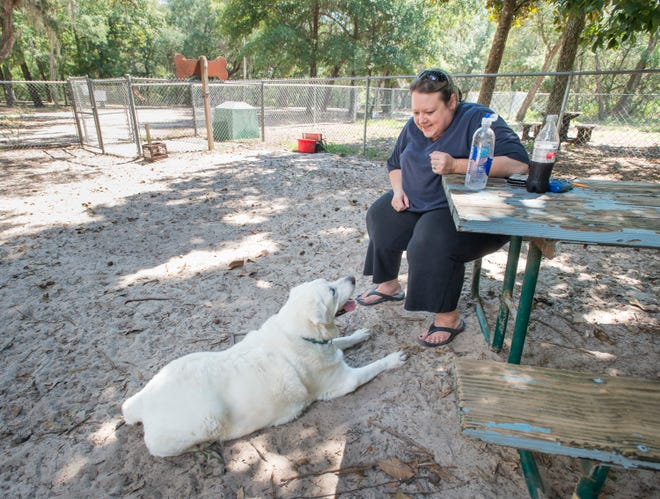 Melissa Knauer, owner of Critter Crazy Pet Sitting Service, chats with Jeb at Shoreline Park in Gulf Breeze on Tuesday, September 18, 2018.  Knauer has mixed views on the proposed waterfront dog park.  While she likes the idea of such a park, Knauer wishes that it is on the other end of Shoreline Park - away from possible chum and fishing gear of boats going in and out of the park.