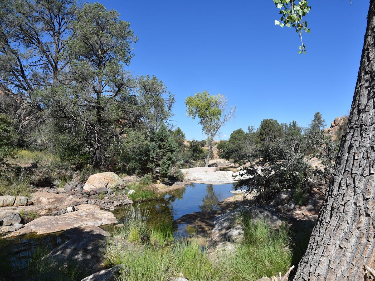 The Boulder Creek Trail in Prescott's Granite Dells adds a splash of green.