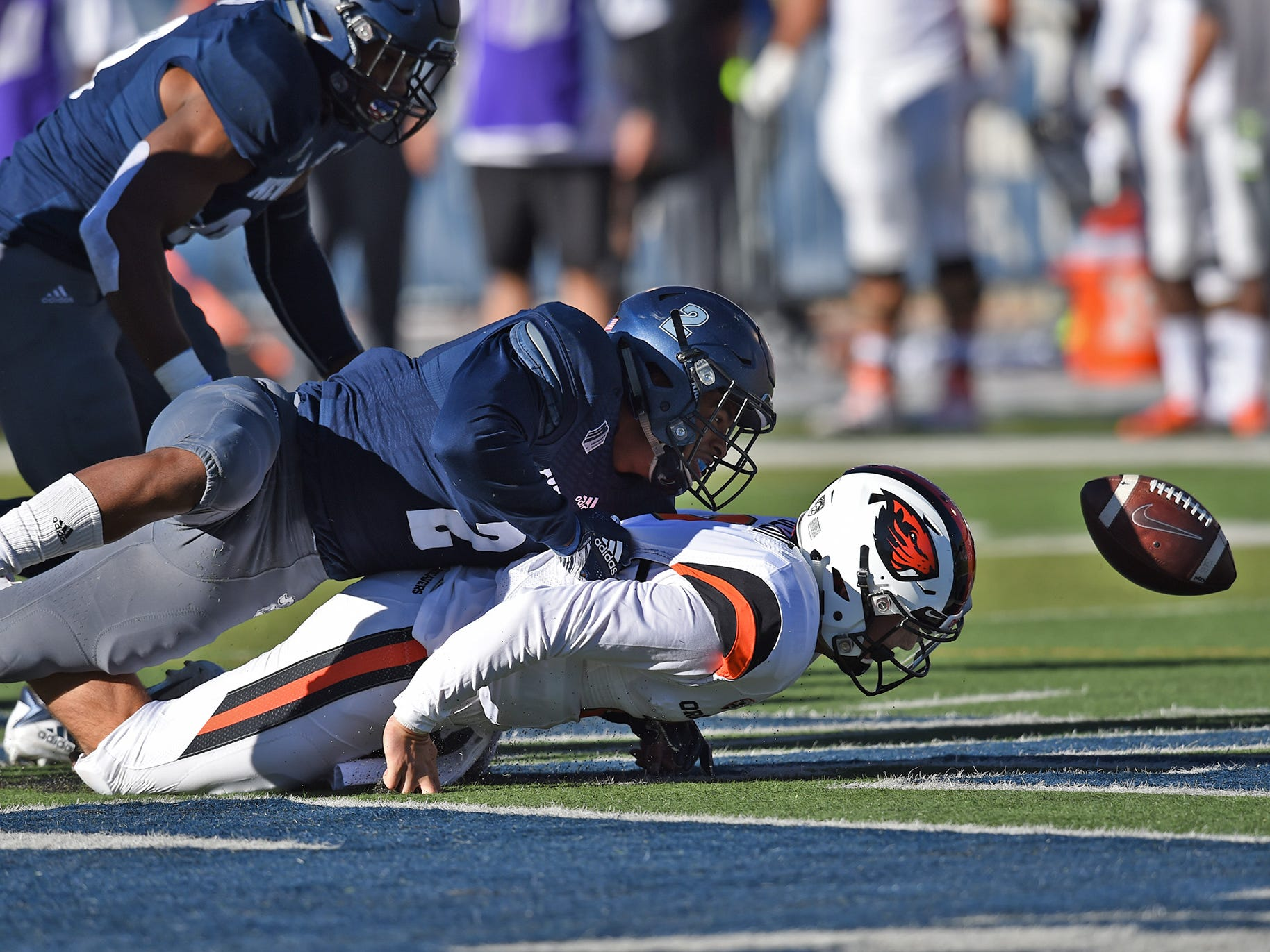 Nevada DB Asauni Rugus forces Oregon State quarterback Conor Blount to fumble the ball at Mackay Stadium on Sept. 15, 2018.