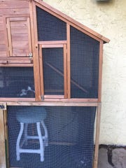 Catio for the kittens keeps them entertained.