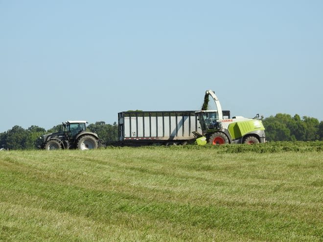 Farmers were eager to chop hay following a wet spell in August.