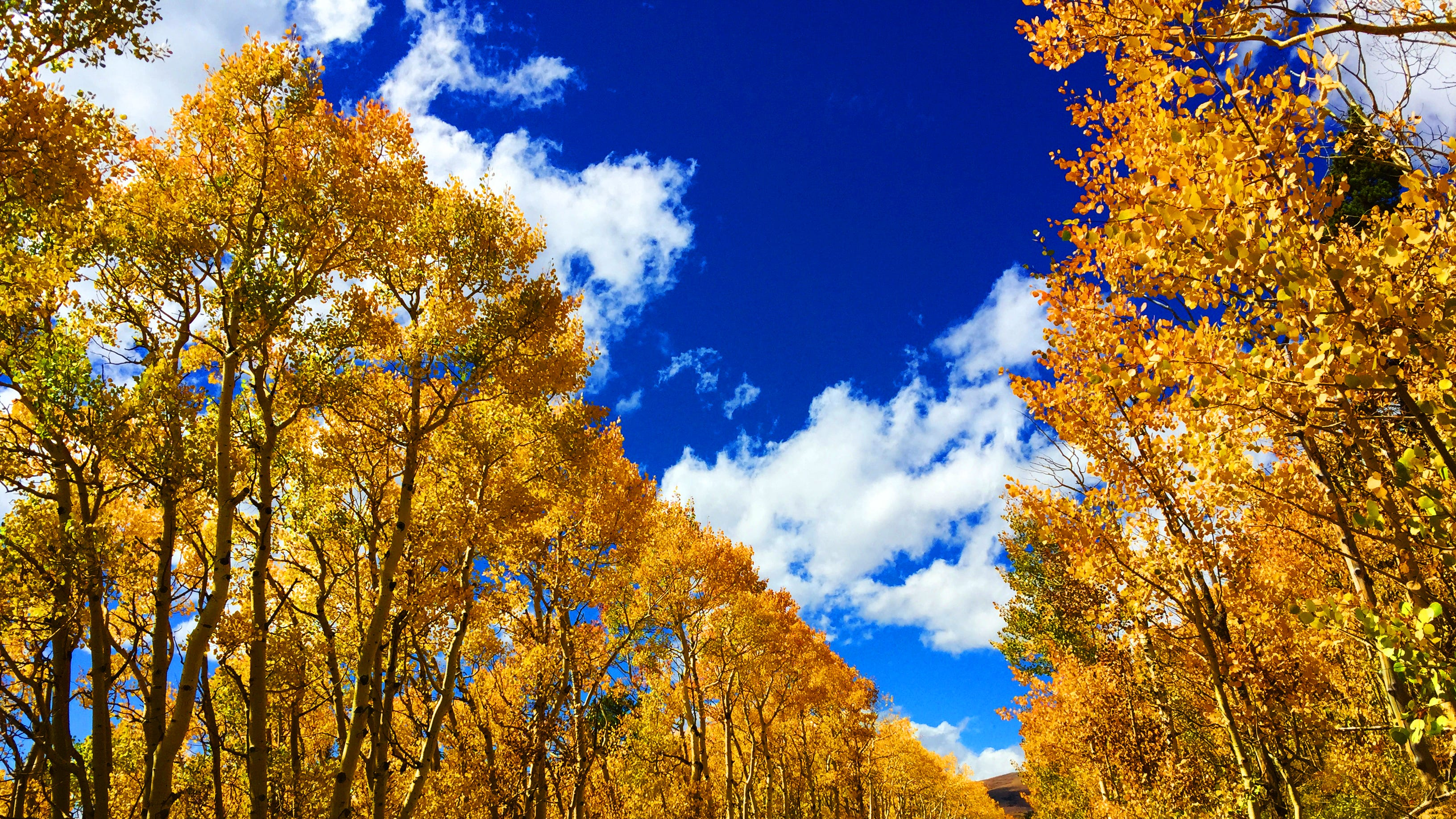 Autum Images: First Day Of Fall: Autumnal Equinox Is Saturday