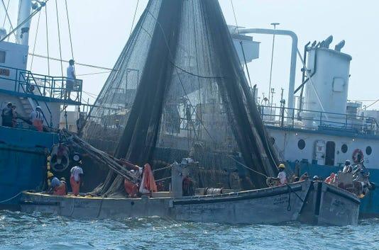 Omega Boats 3