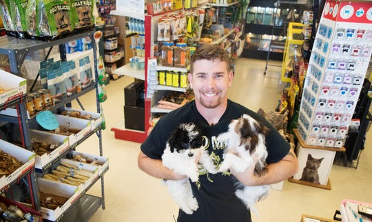Shane Reinhardt, a co-owner at Patriot Pets & Supplies on Pine Island Road in Cape Coral holds some of the puppies for sale at the business on Wedensday, Sept. 19, 2018. The Cape Coral City Council is mulling an ordinance that would ban dogs and cats from being sold in pet stores in Cape Coral. Reinhardt's shop is the only store in Cape Coral that sells puppies.