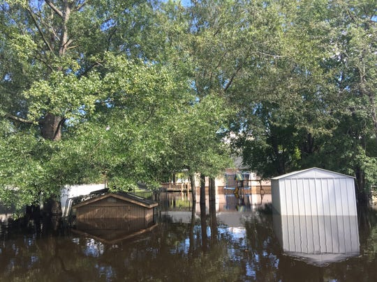 Floodwaters consume sheds in a backyard on Steamer Trace Road in Conway on Tuesday, Sept. 18, 2018.