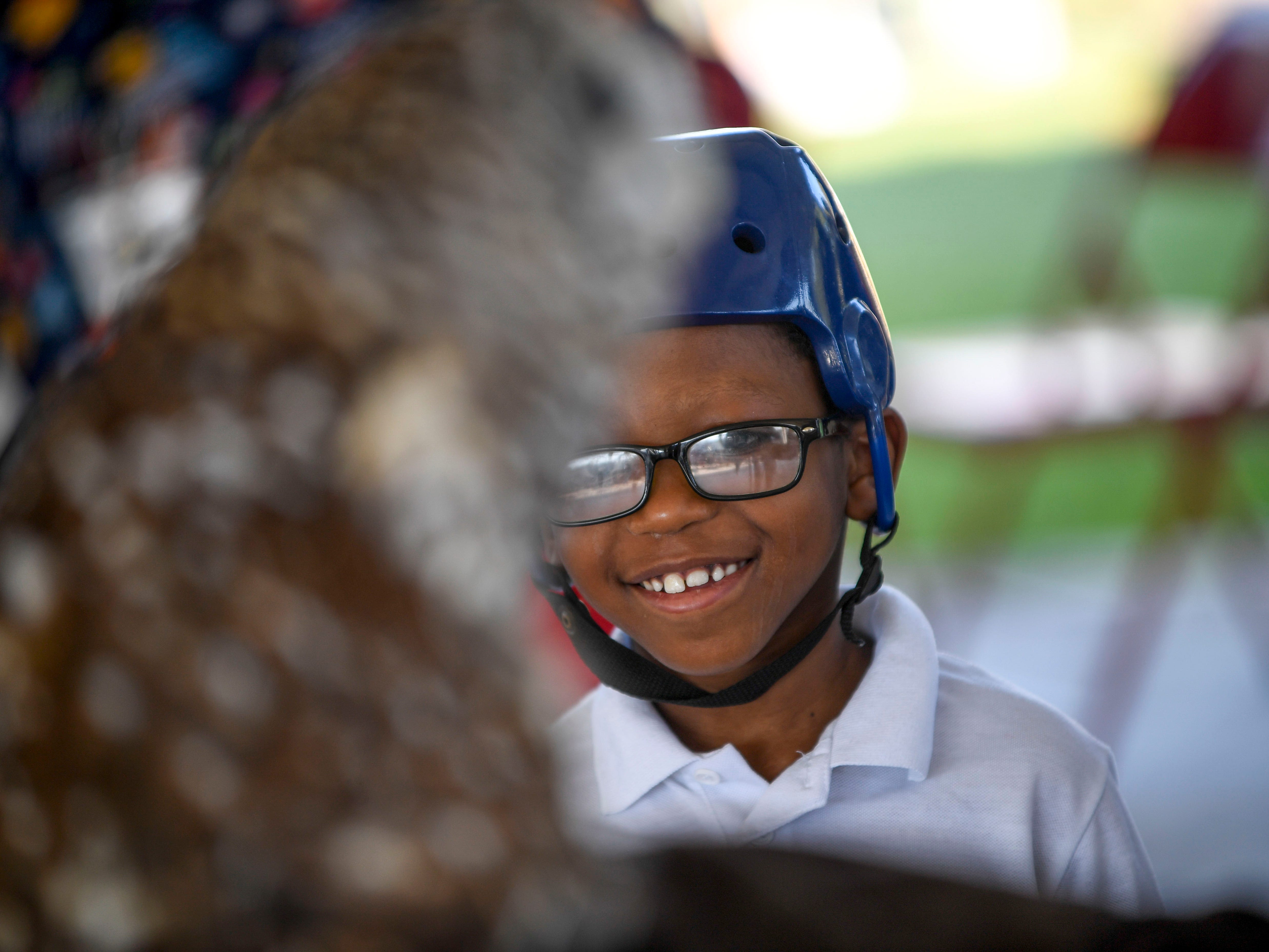 A young boy has a staring contest with a barred owl at the Day of Champions celebration held at Jackson Fairgrounds Park in Jackson, Tenn., on Wednesday, Sept. 19, 2018.