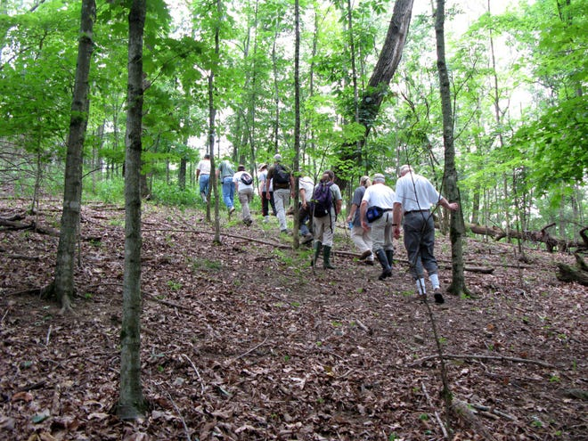 There are plenty of options for all levels of hiking on theMidstate fall calendars.