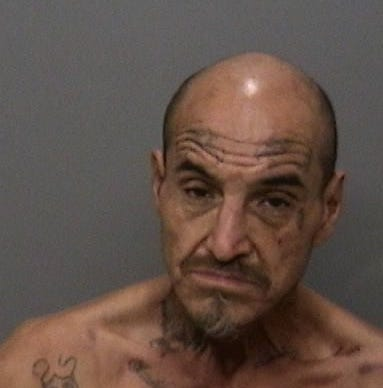 Man arrested after tangling with deputy and K-9