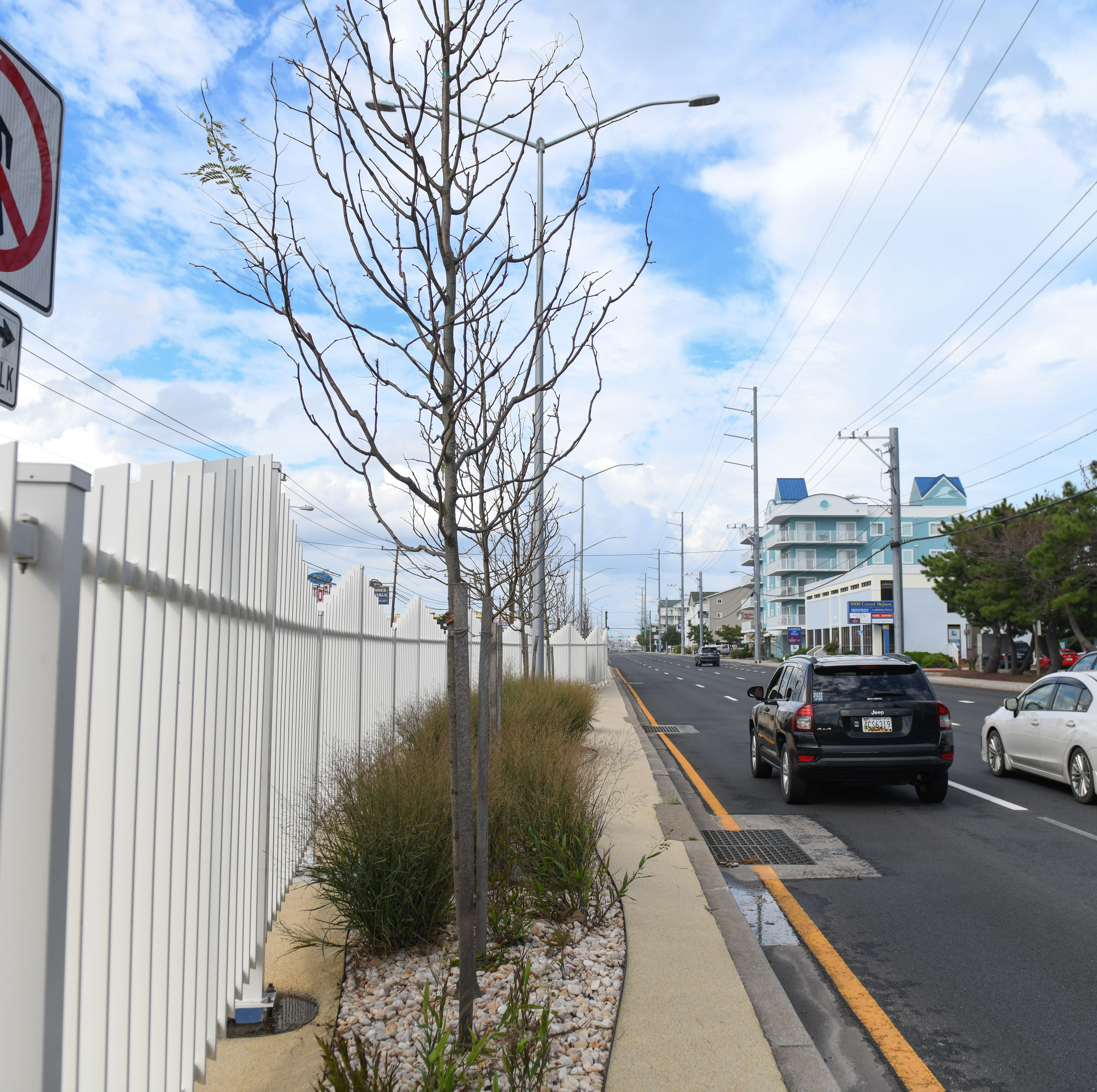 Ocean City median fence: Zero deaths, serious incidents equals successful summer