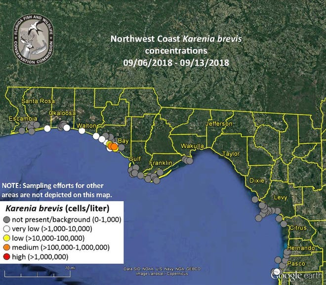 The impacts of red tide, which have devastated marine life along the southwest Gulf Coast, was discovered in Florida's Panhandle last week.