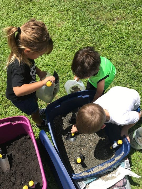 Alphabet Farms Preschool students used recycled milk jugs and other plastic containers to pot mangrove seeds.