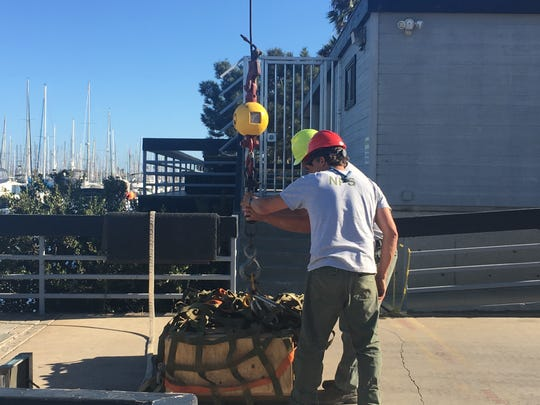 A sea cow skeleton was loaded inside this crate and brought to the Channel Islands National Park headquarters on Tuesday.