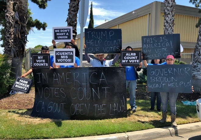 Employees of Gerawan Farming protest outside of the Harris Construction facility in Fresno during First Daughter Ivanka Trump's visit to the Central Valley on Monday, June 18, 2018.