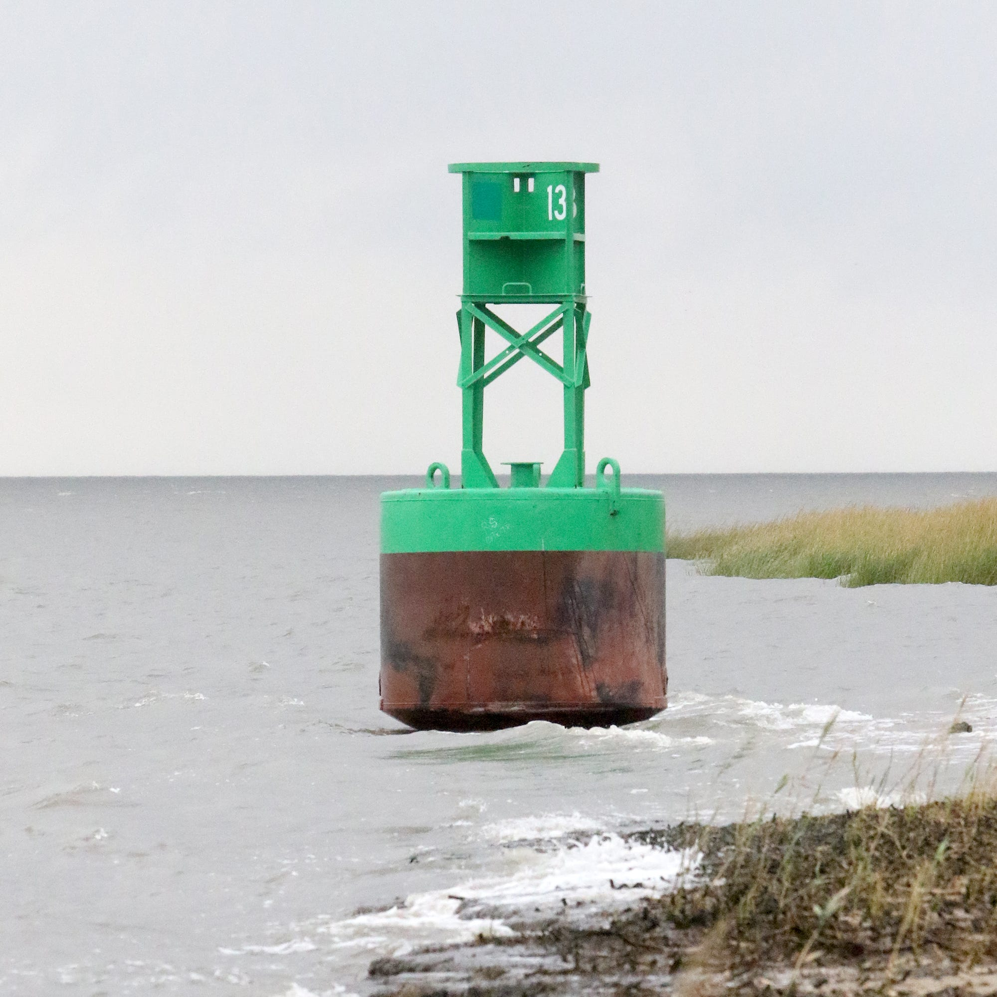 Unlucky 'Buoy 13' stranded on Woodland Beach and visitors love it
