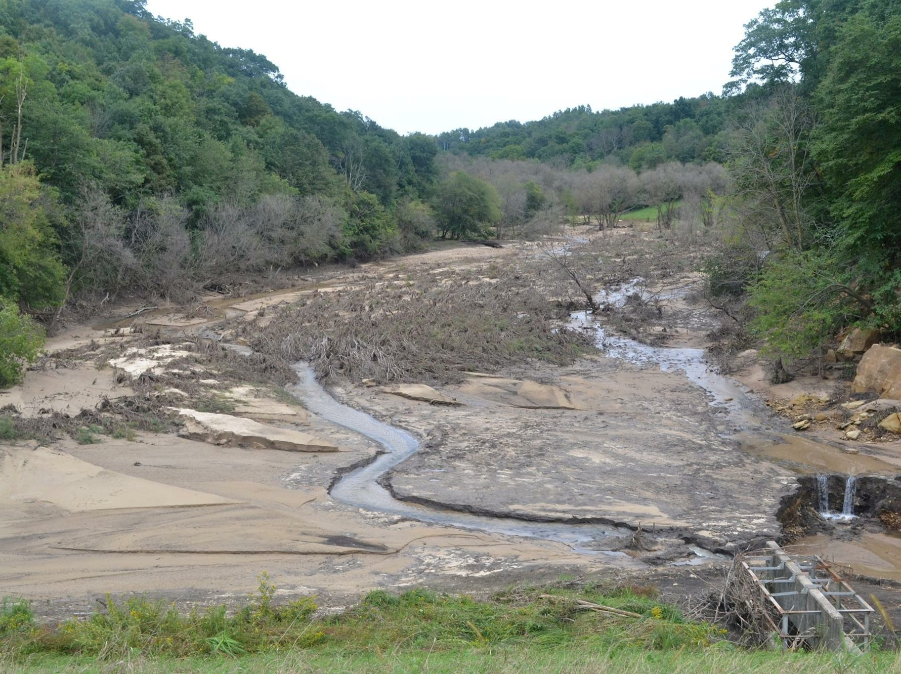 Looking from the top of the remaining dam, toward the area where the water accumulated before the dam failure. Those are trees laid flat by the immense, sudden outflow. This area was full of rain water all the way back to the gray trees in the center distance, at depths about 50 feet.