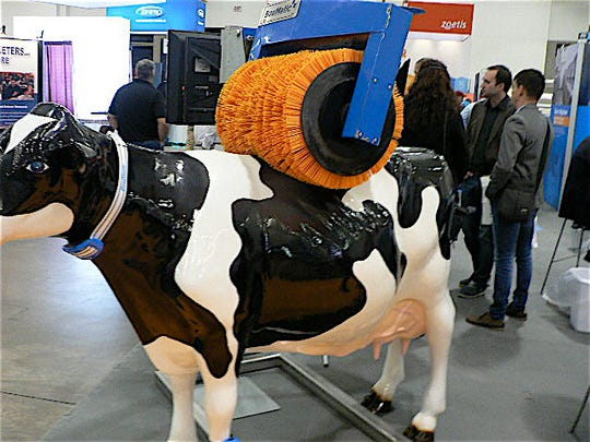 The invention that cows may love more than anything ever invented.