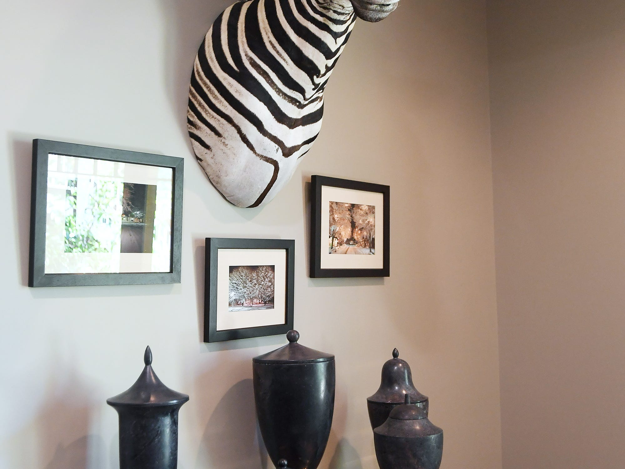 A zebra head, found at a secondhand store, hangs on the wall in the basement entertainment room in the Balsam Mountain Preserve home of Bobbye and Ken Bowdon.