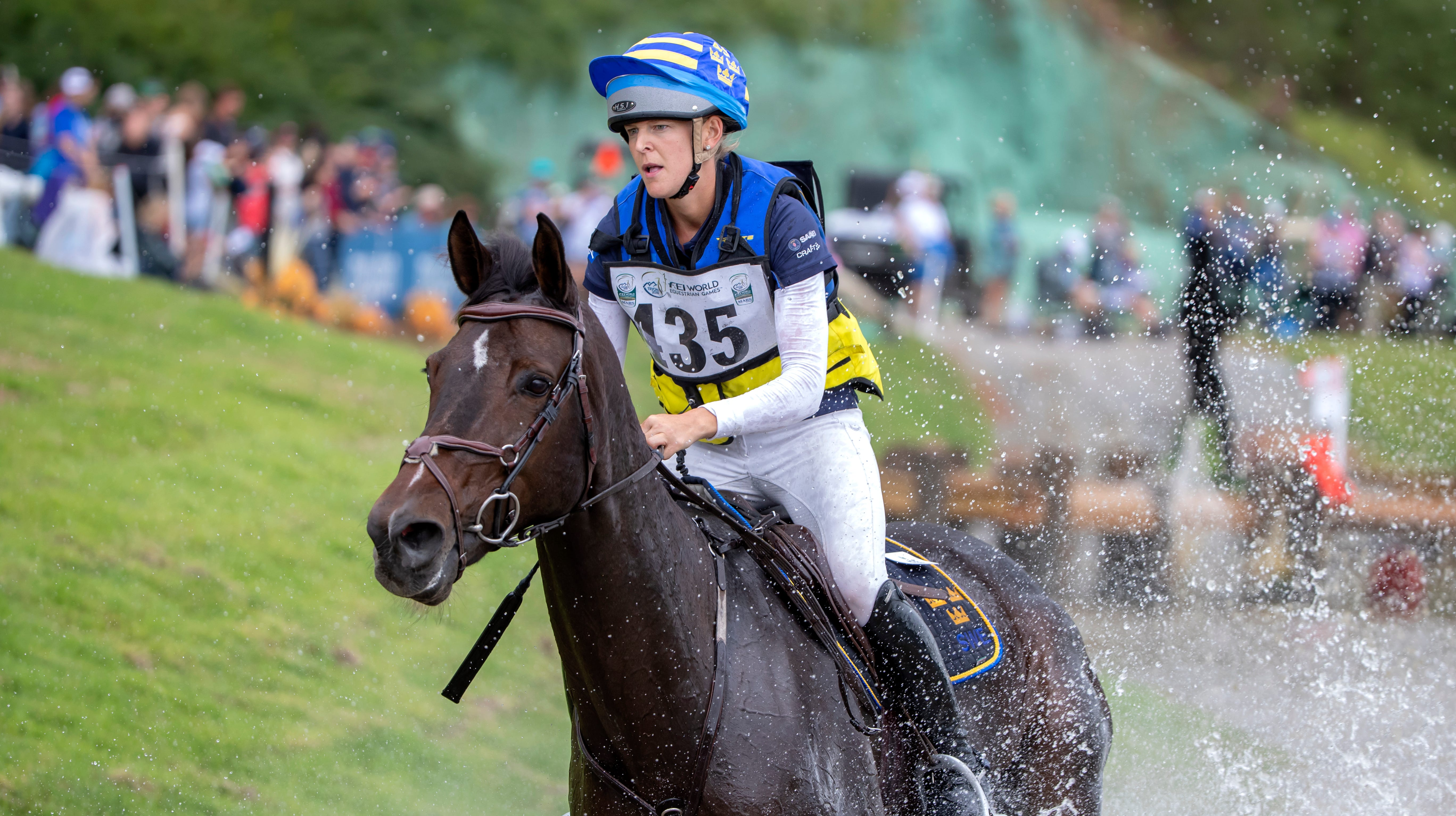 Injured horse euthanized at World Equestrian Games in Tryon