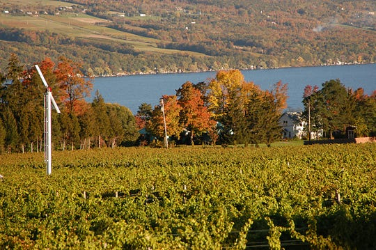 Visit Seneca Lake during the fall on a leaf peeping road trip.