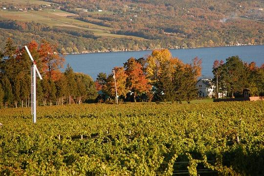 Visit Seneca Lake during the fall on a leaf peeping road trip.