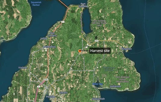 Pope harvest site