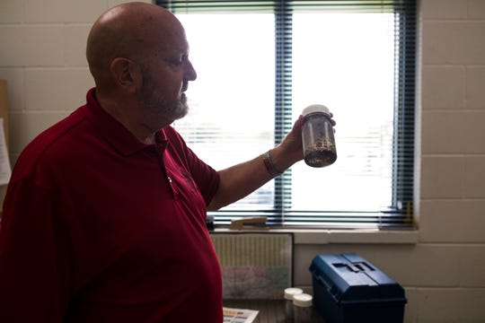 Mike Gillis, director of animal care services, holds up a jar of mosquitos that Vector Control picked up on Tuesday, Sep 18, 2018, at Corpus Christi Animal Control.