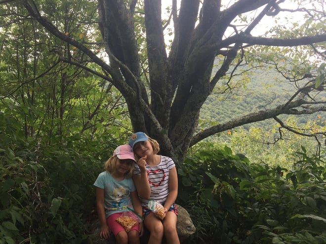 My daughters, taking a break from berry picking in the Pisgah National Forest. When I asked for a photo, they instinctively leaned into each other.