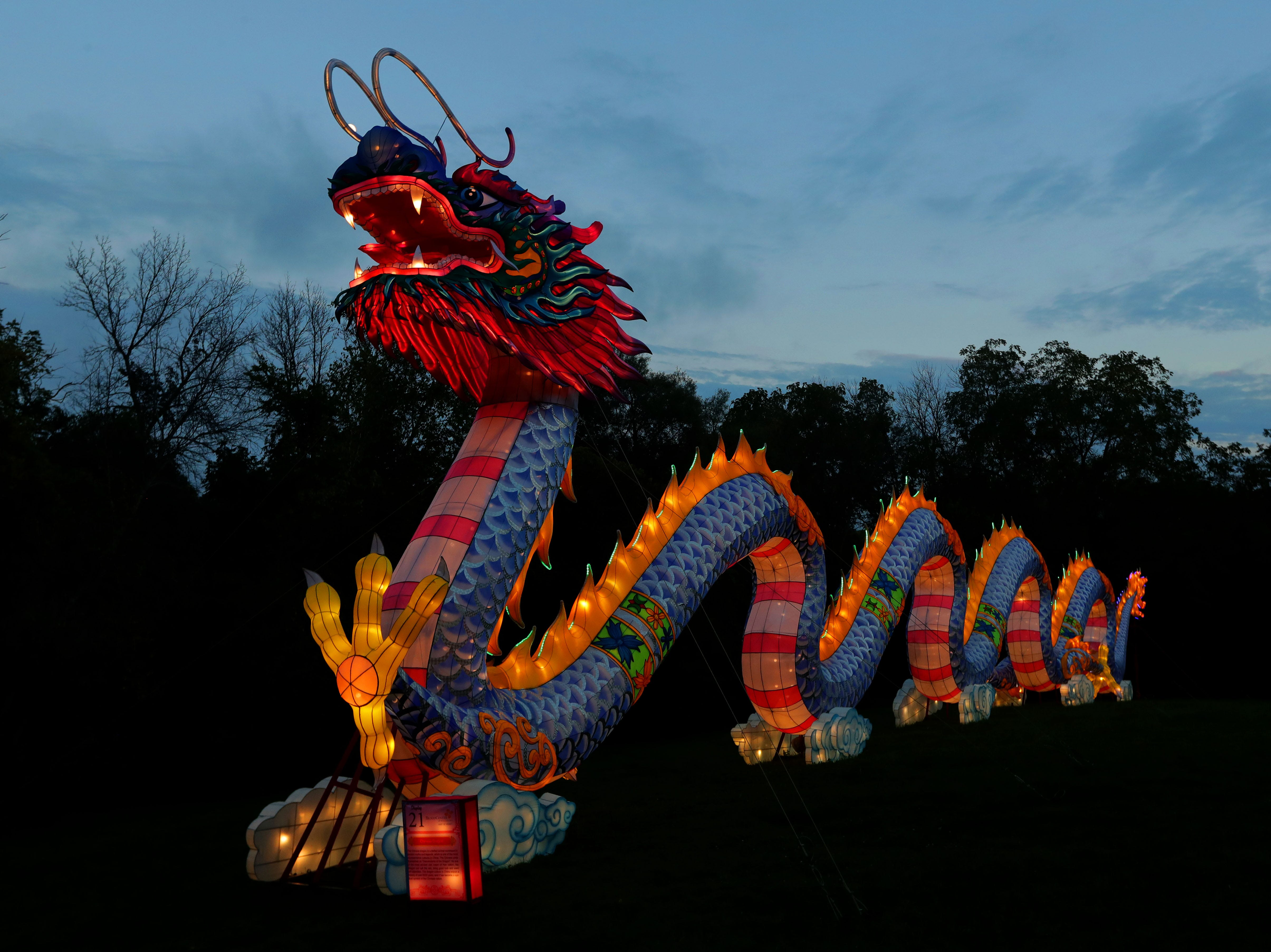 The lone returning lantern display from last year is the popular 200-foot-long dragon.