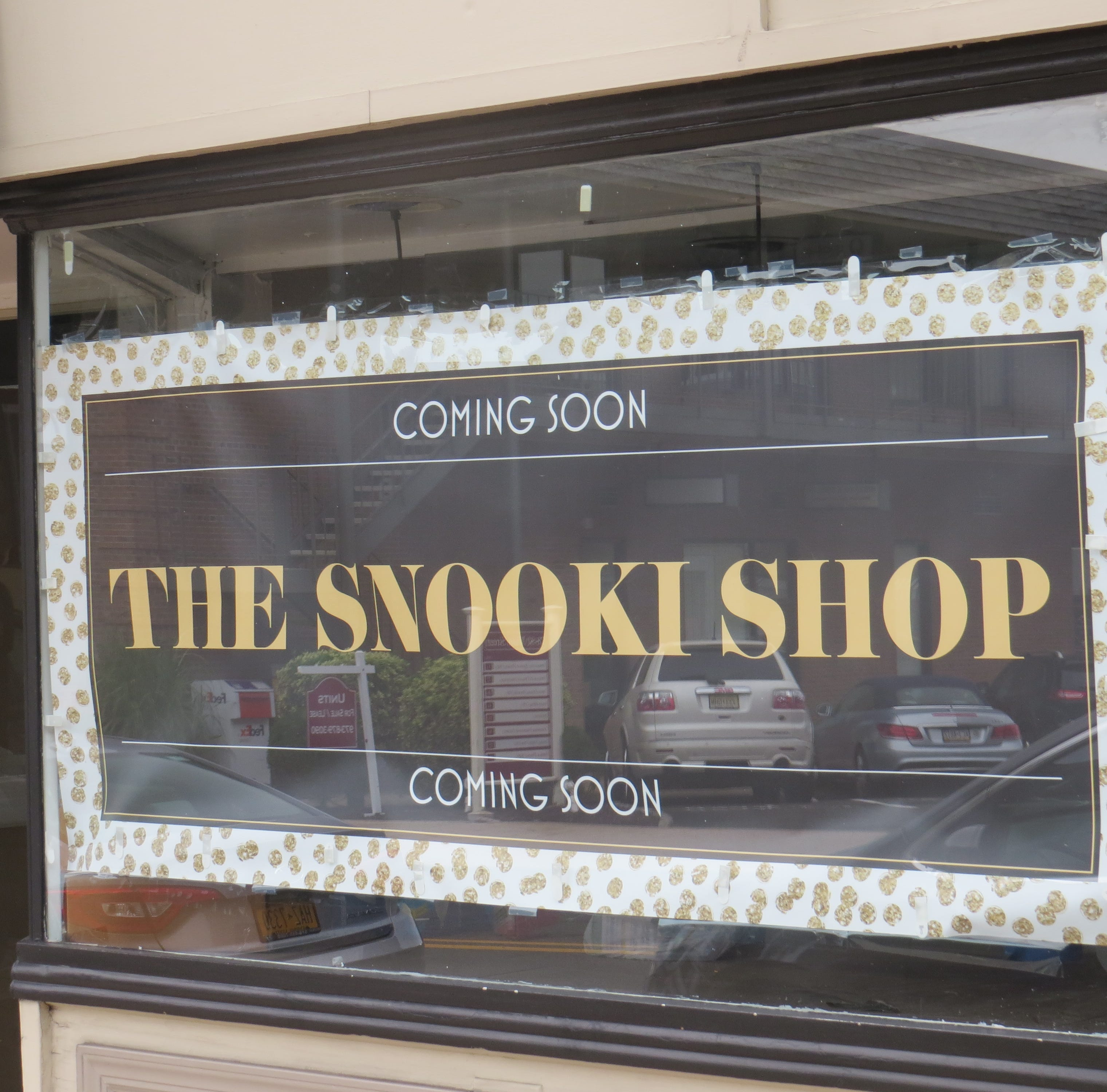 Snooki of 'Jersey Shore' opening clothing shop in downtown Madison