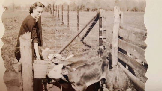 """Dot Hawthorne raising her six calves by feeding them """"on the bucket."""" As a girl from the city, she said her husband, John, was proud of her for this."""