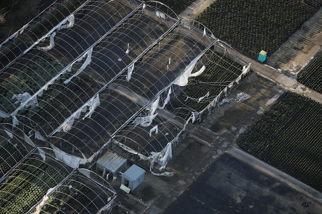 Greenhouses in Homestead, Fla., show damage Sept. 13, 2017, in the aftermath of Hurricane Irma.