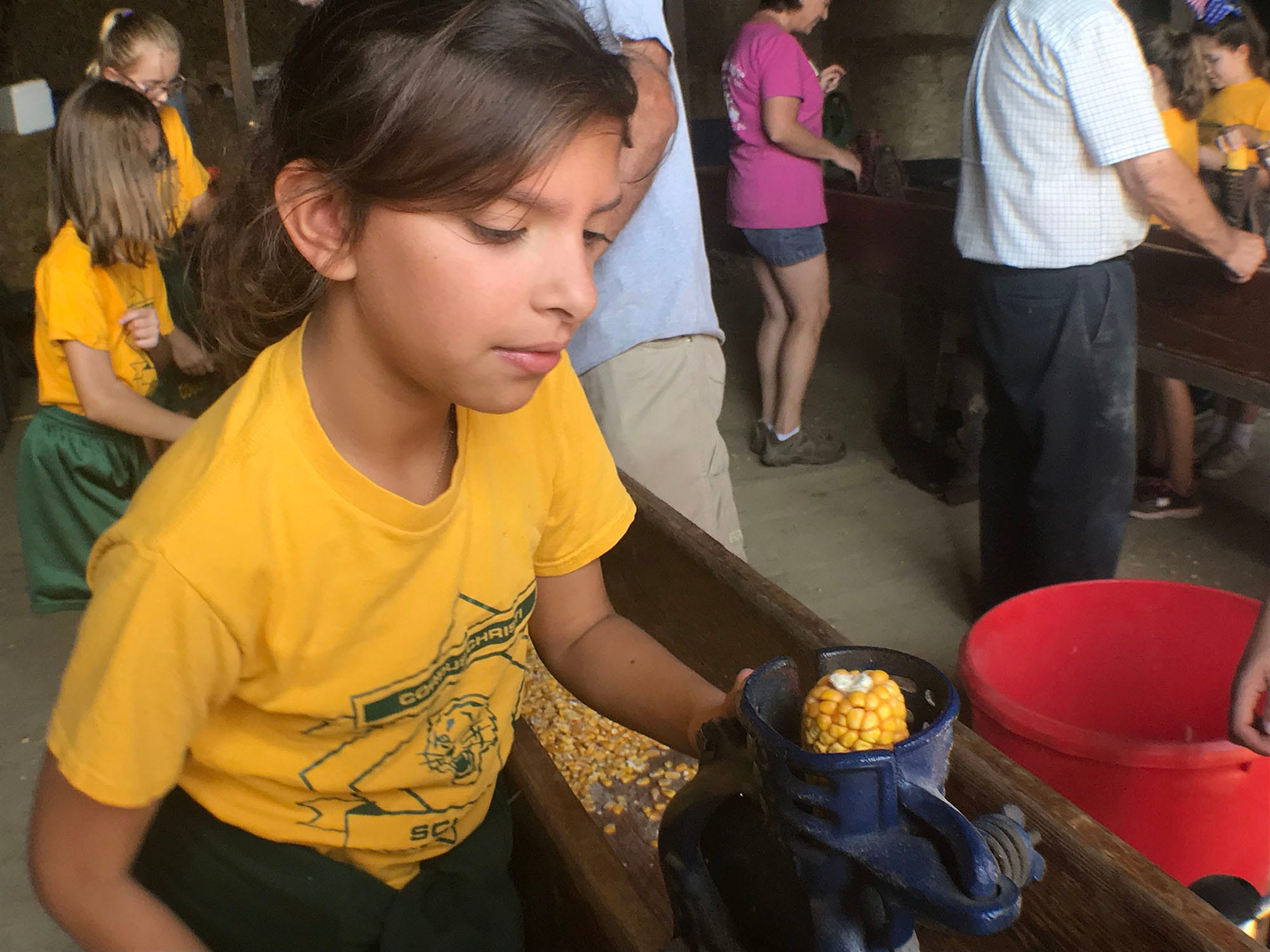 Charley Kalathas of Corpus Christi School uses a corn sheller. Franklin County fourth-graders are visiting the Franklin Fall Farm Fun Fest, today.  The annual event is being hosted by a father-daughter dairy farming team, Musser Farm. The students' trip is hosted by the Agriculture Education Institute. The fest itself is hosted by the
