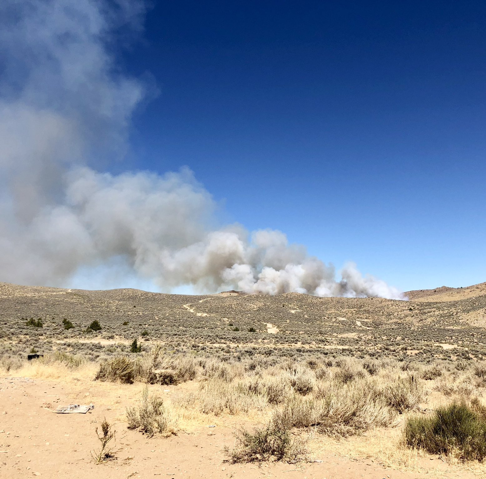 BLM: Chimney Fire spreads to 120 acres in Sun Valley