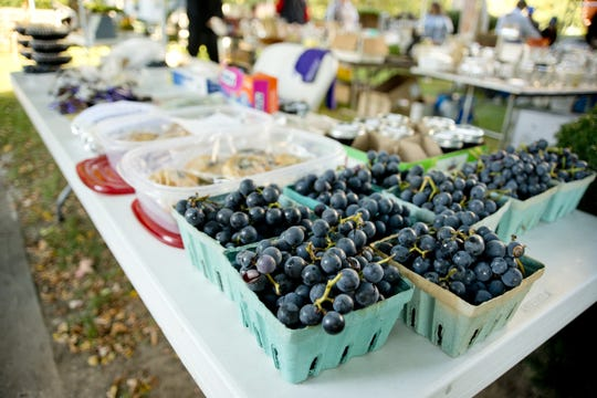 The Naples Grape Festival is set for Saturday and Sunday, Sept. 29 and 30, on the grounds of Naples High School and Memorial Town Hall.