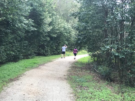 Join the Move walk on the Miccosukee Greenway on Saturday.