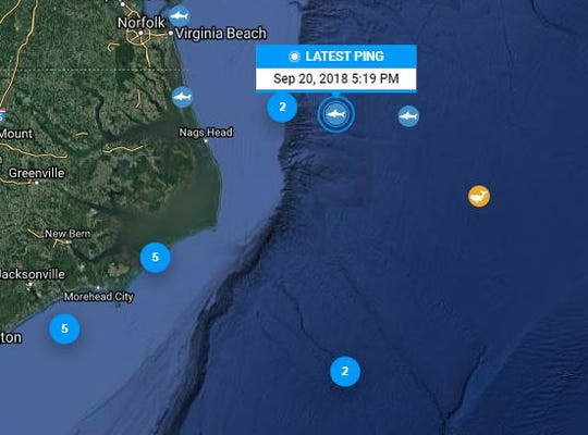After being silent since January, Katharine the Shark pinged today off the coast of North Carolina.