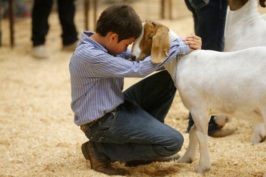 2 Livestock Show
